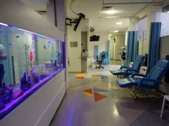 Um aquário traz calma às crianças
